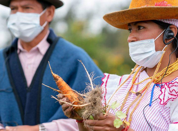 Fin al estado de excepción en Ecuador