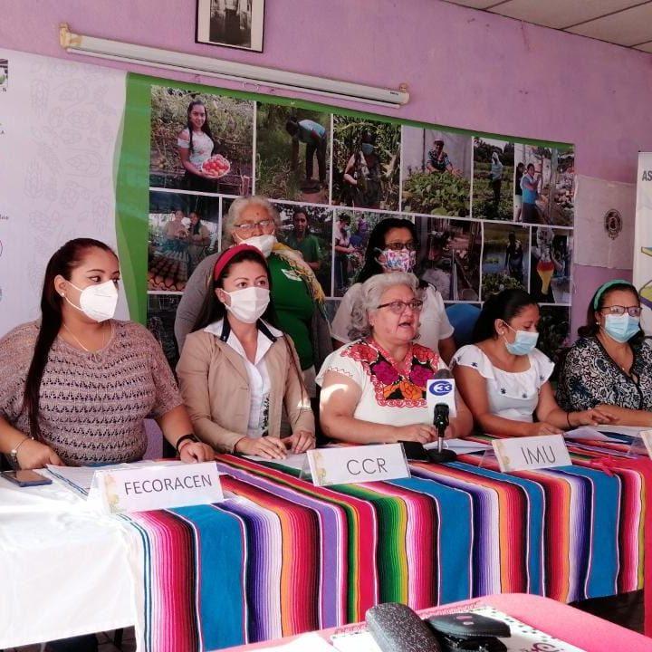 Alianza de mujeres califica el manejo de la pandemia por parte del Ejecutivo