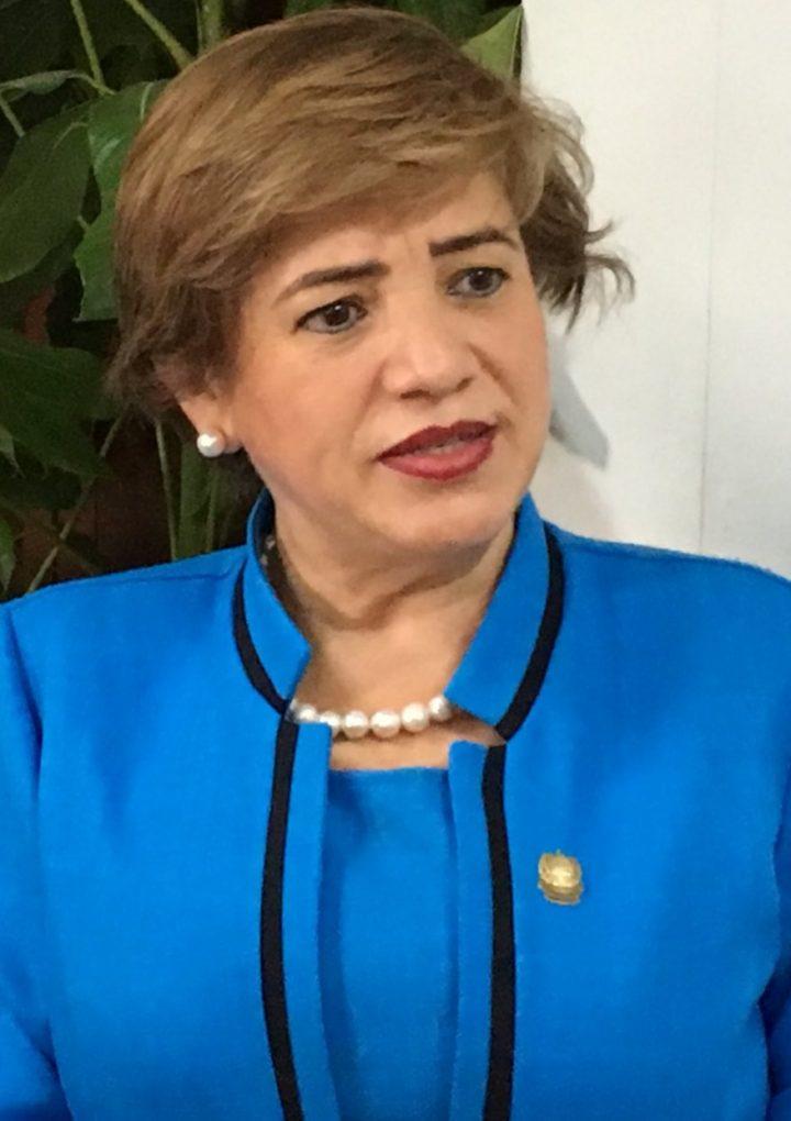 «No hay posibilidades para hacer una transición madura y responsable», Rina Araujo