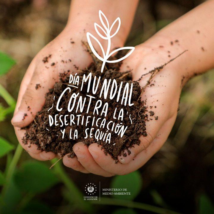 Hoy se celebra el Día Mundial contra la desertificación y la sequía