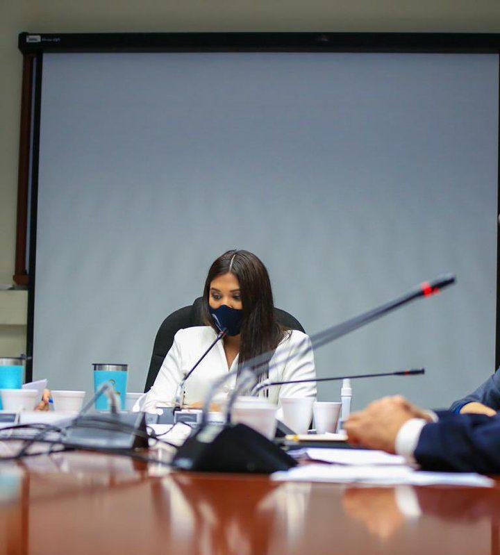 Diputados Cyan aseguran retirar mecanismos de ONG's