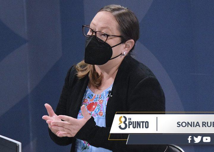 «Gobierno instrumentaliza por medio de sus instituciones»: Sonia Rubio