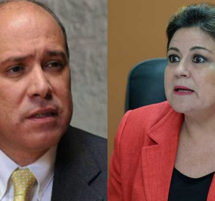 Rodrigo Ávila y Margarita de Escobar compadecen hoy ante Comisión