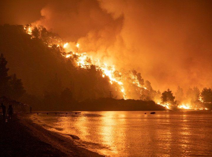 Incendios forestales en 5 de los 7 continentes del mundo