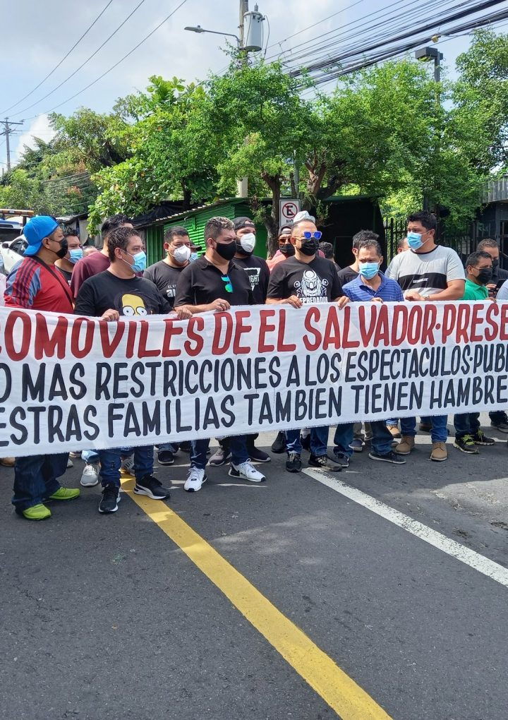 Artistas independientes piden derogar Ley Transitoria