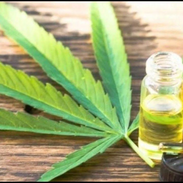 Congreso Tico aprueba Cannabis medicinal
